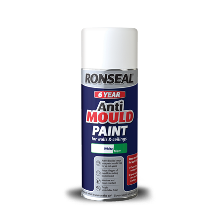 Best Paint For Anti Mold