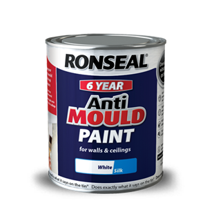 6 Year Anti Mould Paint.png